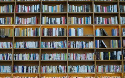 Besser in der Schule durch Lesetraining?
